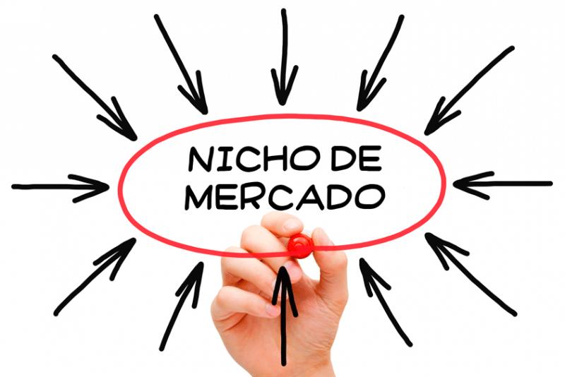 Como escolher o nicho lucrativo para trabalhar com marketing digital